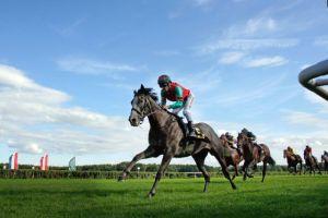 Rennendes Pferd, Foto