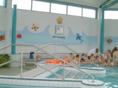 Schwimmhalle mit Sauna-Strausbad, Bild