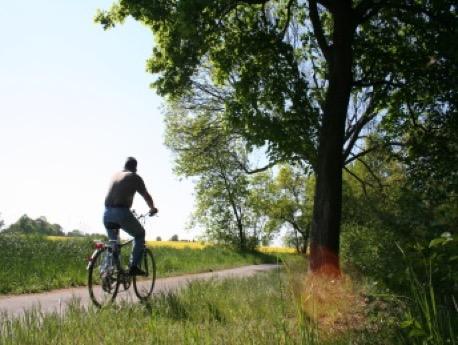 Unterwegs in der Märkischen S5-Region auf dem Fahrrad, Bild