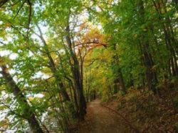 Wanderweg am Bötzsee, foto