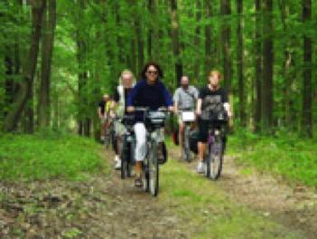 Radfahrer im Wald, Foto