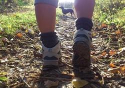 Wandern mit Hund, Foto